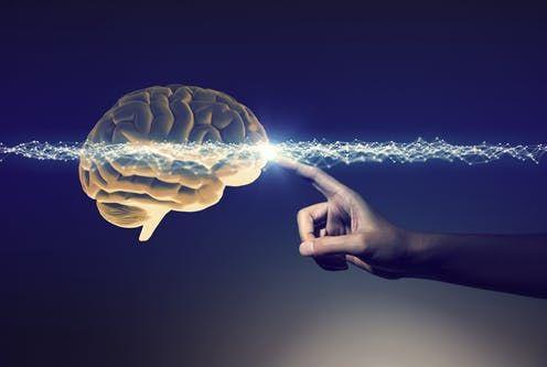 Mozek avýkon